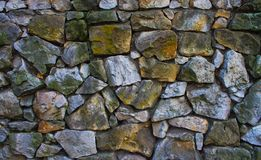 Wal textur för sten Arkivbild