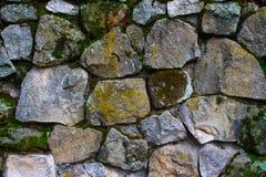 Wal textur för sten Royaltyfria Bilder