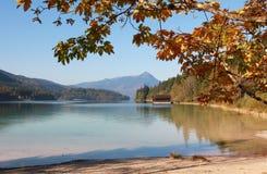 Walchensee autunnale della riva del lago, Baviera Fotografia Stock