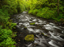Walclella creek long exposure Stock Photography
