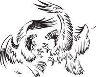 Walczący ptaki Obraz Royalty Free