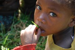 Walczyć pierwszy głód przyczynę śmiertelność noworodków w Afryka Obraz Royalty Free