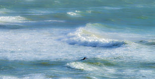 Walczyć fala w szorstkim morzu Fotografia Stock