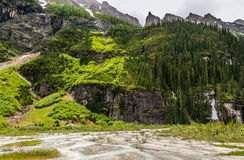 Wald über dem See Lizenzfreie Stockfotografie
