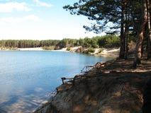 Wald über einem See Stockfoto
