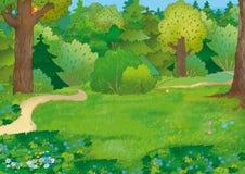 Wald Stockbild