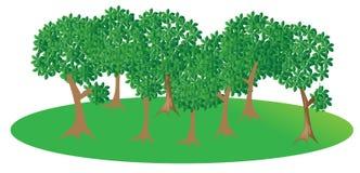 Wald lizenzfreie abbildung