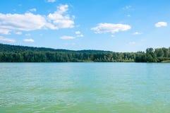 Wald auf der Bank des Sees Lizenzfreie Stockfotos