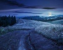 Wald auf einem Gebirgsabhang im ländlichen Gebiet nachts Stockfotos