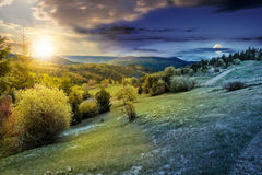 Wald auf einem Gebirgsabhang im ländlichen Gebiet Tag und Nacht Lizenzfreies Stockfoto