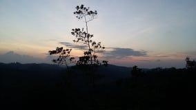 Wald, Berg, Himmel u. Sonne Stockfotografie