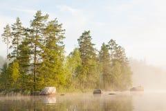 Wald bis zum dem See und dem nebeligen Morgen Lizenzfreies Stockbild