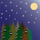 Wald bis zum Nacht Lizenzfreies Stockbild