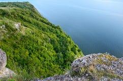 Wald in den Bergen gegen das blaue Meer Lizenzfreies Stockbild