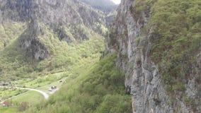 Wald in den Bergen mit Kiefern und einer alleinen Straße in der Landschaft Vogelperspektive der Durmitor-Berge im Norden von M stock footage
