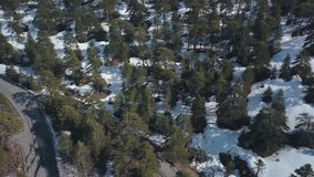 Wald in den Bergen mit Schnee auf dem Boden am sonnigen Tag, Luftschuß stock video footage