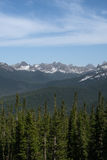 Wald in den Bergen von Sibirien Stockbild