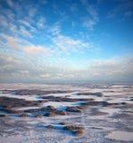 Wald der Ebene im Winter Lizenzfreie Stockfotografie