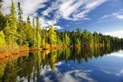 Wald, der im See sich reflektiert Lizenzfreies Stockbild