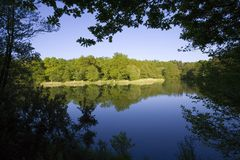 Wald des Dekans Gloucestershire Midlands England Stockbild
