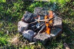 Wald des Feuers im Frühjahr lizenzfreies stockbild