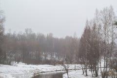 Wald des Flusses im Frühjahr im Nebel Stockfoto