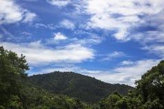 Wald des Gebirgsblauen Himmels Stockfoto