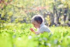 Wald des kleinen Mädchens im Frühjahr Lizenzfreie Stockfotografie
