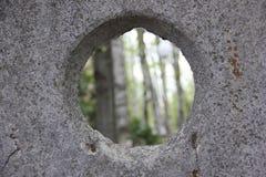 Wald durch das konkrete Fenster Stockbilder