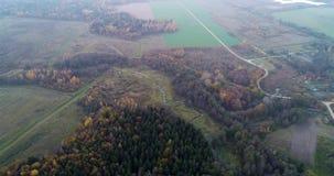 Wald im Herbst und in der sch?nen Flussbiegung aerial stock video