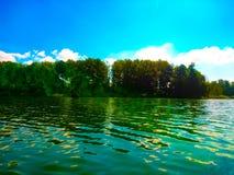 Wald im Hintergrund des Sees stockfotos