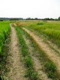 Wald, landwirtschaftlich, Landstraße, laufend eine grüne saftige Wasserwiese durch lizenzfreie stockfotos