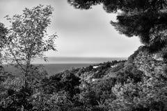 Wald, Meer und Häuser, bw Lizenzfreie Stockfotografie