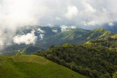 Wald morgens, Landschaftsnebel auf Berg Stockbilder