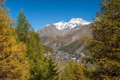 Wald nahe Saas Gebühr, die Schweiz Lizenzfreies Stockfoto