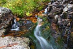 Wald-Nebenfluss-Kaskade Lizenzfreies Stockfoto