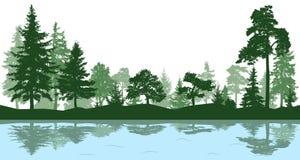 Wald, Park, Gasse Landschaft von lokalisierten Bäumen