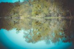 Wald reflektiert im Fluss, Frühling Lizenzfreie Stockbilder