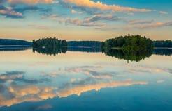 Wald reflektiert im See Lizenzfreies Stockfoto
