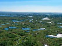 Wald-Tundra Landschaft Lizenzfreies Stockfoto