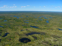 Wald-Tundra Landschaft Lizenzfreie Stockfotos