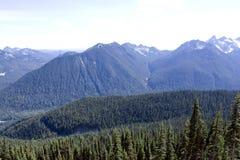 Wald und Berge Stockbilder