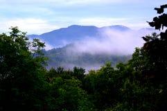 Wald und Berge Stockfotografie