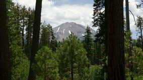 Wald und Bergspitze an vulkanischem Nationalpark Lassens stock video