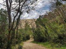 Wald und Düne von Pilat die höchste Sanddüne in Europa, Arcachon Bucht, Aquitanien, Frankreich, Atlantik stockfotos