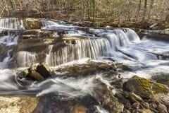 Wald und Fälle auf steinigen Nelken-Nebenfluss stockfotos