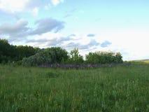 Wald und Feld Stockfotos