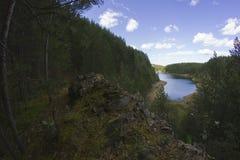 Wald und Fluss Stockfotografie