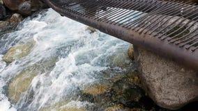 Wald und Fluss in den Bergen stock footage