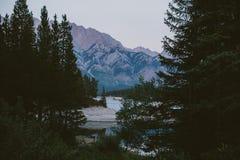 Wald und Fluss mit Bergen im Hintergrund Stockfoto